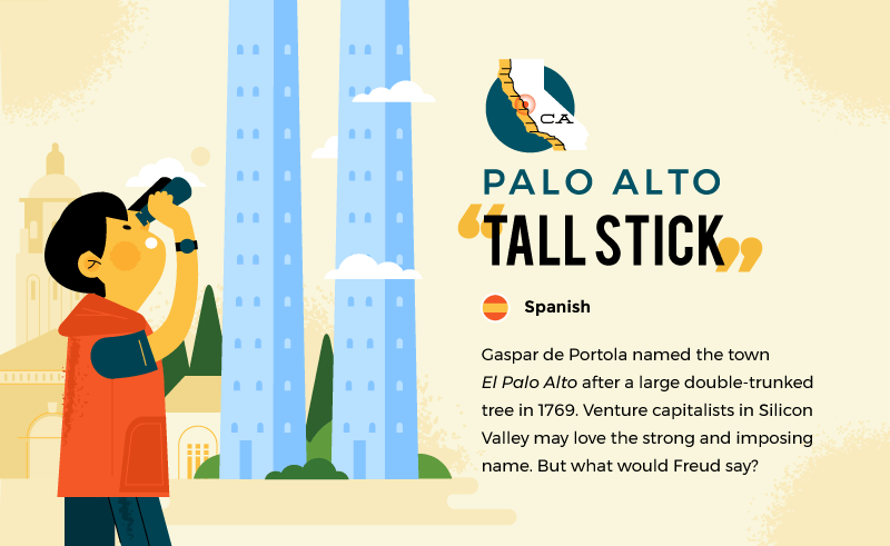 literal name of palo alto - tall stick